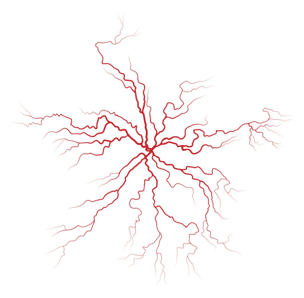 Clear Vein illustration